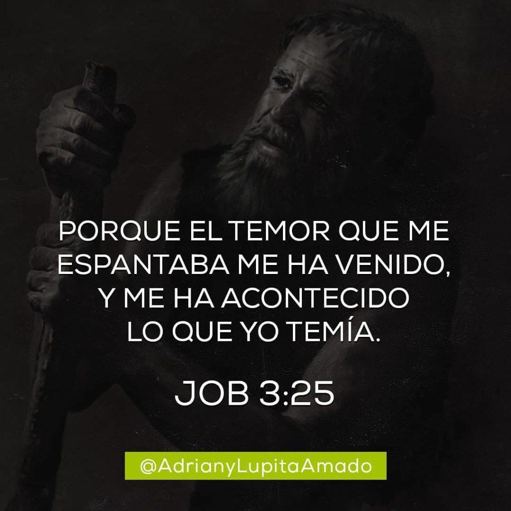 Frases Adrian y Lupita Amado-porque el temor que me espantaba me ha venido y me ha acontecido lo que yo temia